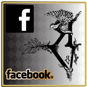 Suivez Rebelles et Vagabonds sur Facebook